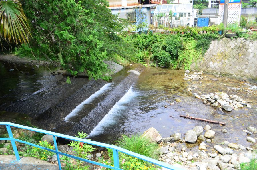 山本鮎狩り場,川