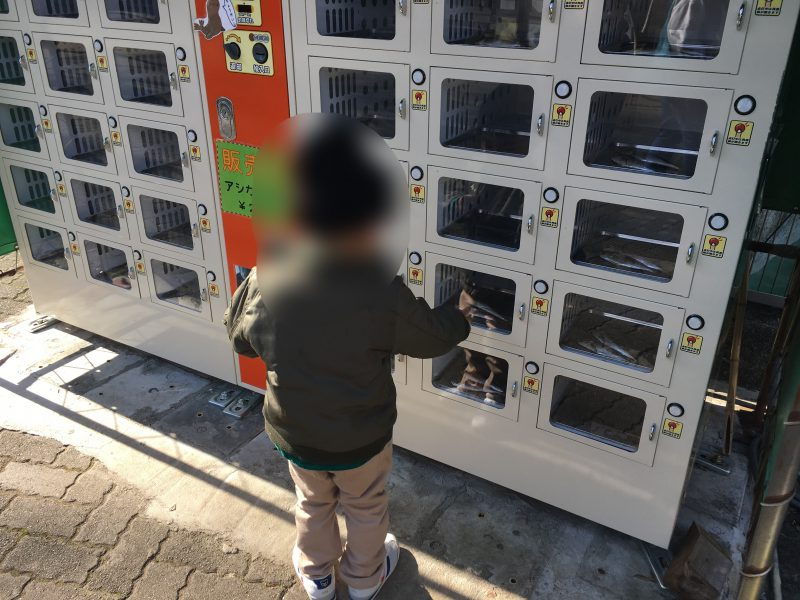 愛媛県立とべ動物園,餌やり