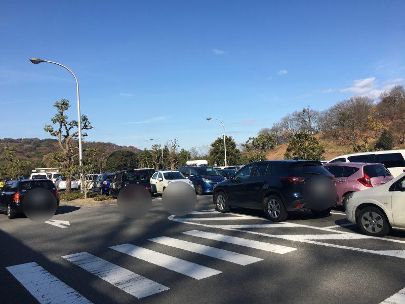 愛媛県立とべ動物園,駐車場