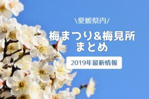 愛媛県内の梅まつり・梅見所まとめ