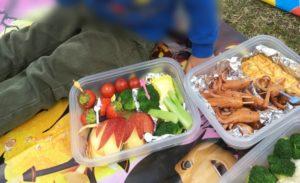 タッパーに入れたピクニックのお弁当