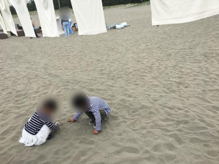 高知Tシャツアート展で砂浜で遊ぶ子供