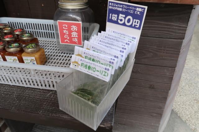 山越うどん(香川)のお土産の種