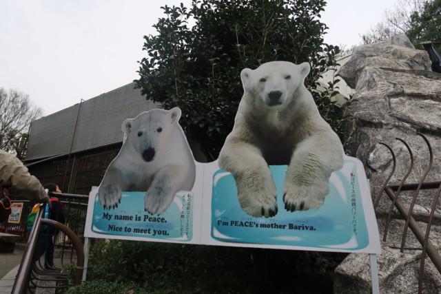 とべ動物園のしろくまピースの看板