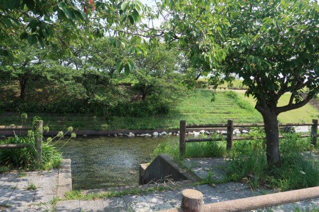 赤坂泉公園(砥部町)の駐車場から見える川