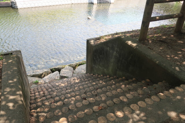 赤坂泉公園(砥部町)の川へ続く階段