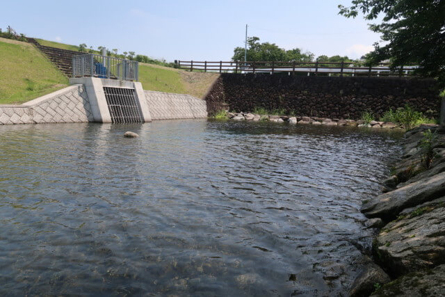 赤坂泉公園(砥部町)の川の様子