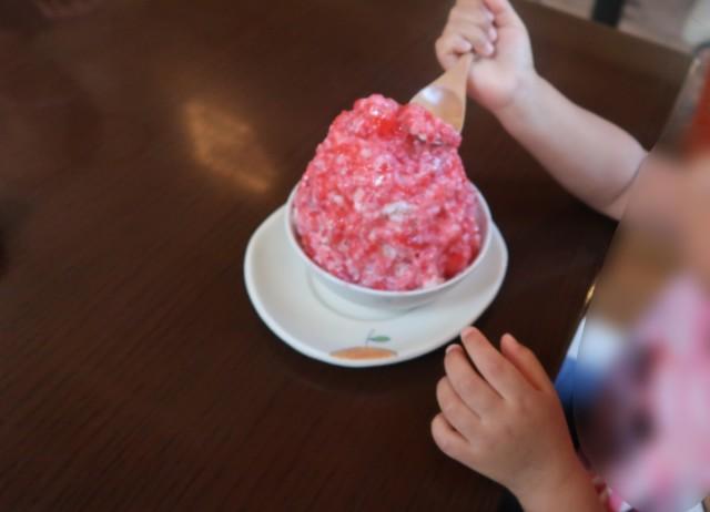 みかんカフェ(松山)のかき氷を食べる子供