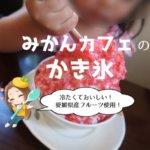 みかんカフェ(松山)のかき氷
