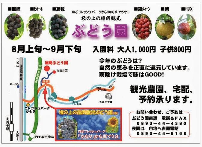 福岡ぶどう園,内子,ぶどうの品種