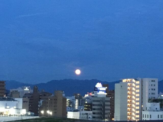サンルート松山,ビアガーデン,夜景