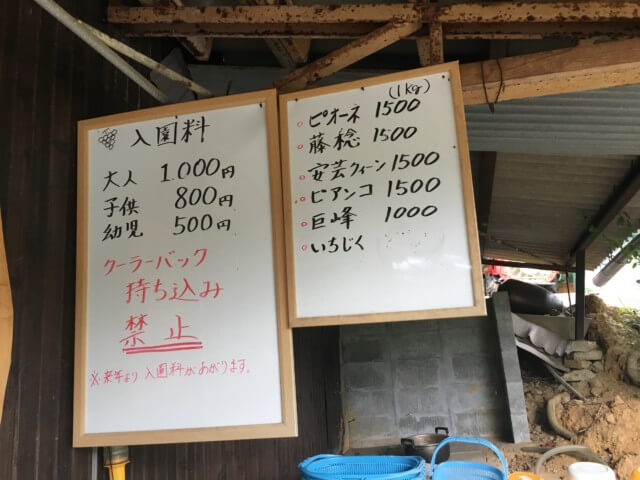 福岡ぶどう園,内子,料金