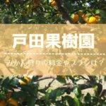 戸田果樹園,みかん狩り