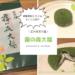 【霧の森大福】愛媛で大人気の幻のお菓子!!お土産にも是非!!